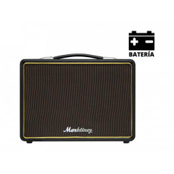 Altavoz batería amplificador guitarra Bluetooth. Mod. MGB 110 USB BAT