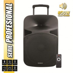 "Altavoz Autoamplificado 15"" 800W Serie PRO COOL SOUND. Mod. CS0170"
