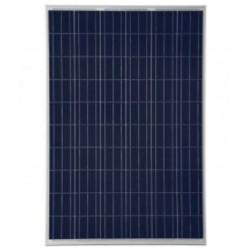Panel solar policristalino 12V 165W 36 células. Mod. DS-002556