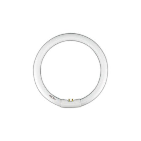 Tubo fluorescente circular trif sforo t9 22w dia electro - Tubo fluorescente circular ...