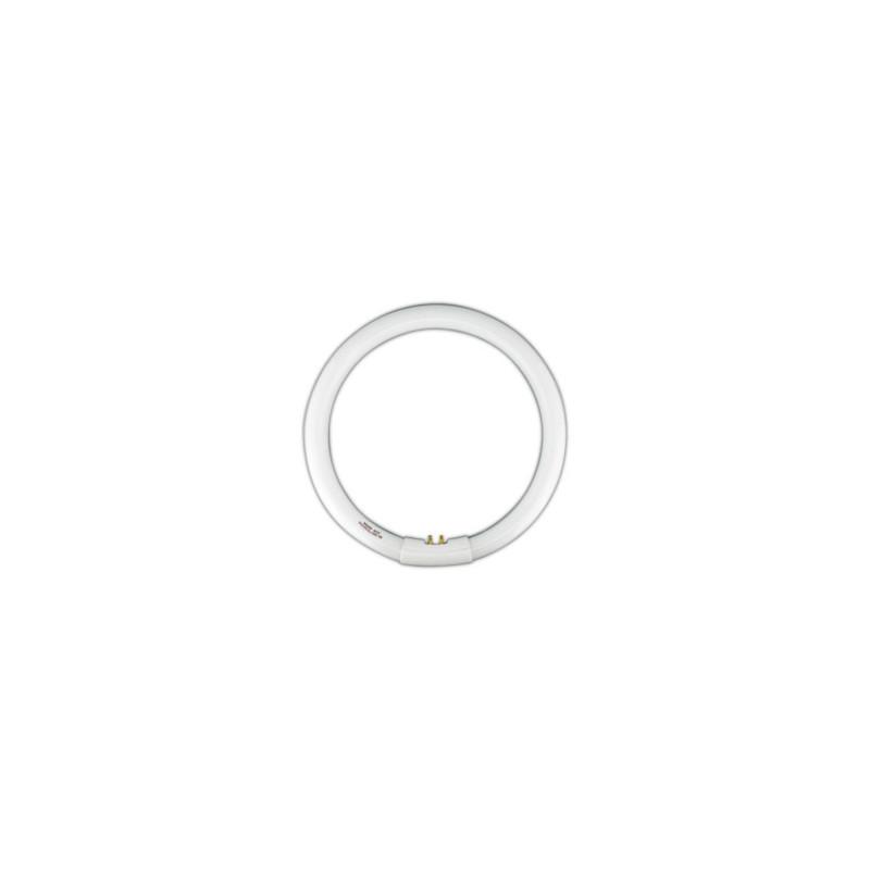 Tubo fluorescente circular trif sforo t9 32w dia electro for Tubo fluorescente circular 32w