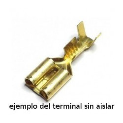 Terminal Faston Hembra 63 mm