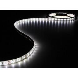 TIRA DE LED 3M BLANCO FRÍO 180 LEDS Y ADAPTADOR 12V. MOD. LEDS14W